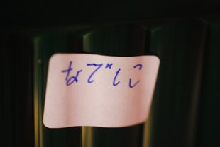 a15b.jpg